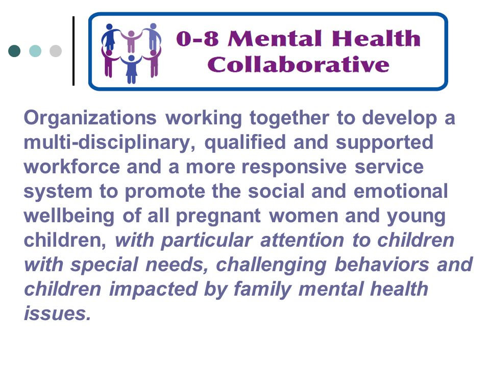 Organizations working together to develop a multi-disciplinary, qualified and supported workforce and a more responsive service system to promote the social and emotional wellbeing of all pregnant women and young children, with particular attention to children with special needs, challenging behaviors and children impacted by family mental health issues.