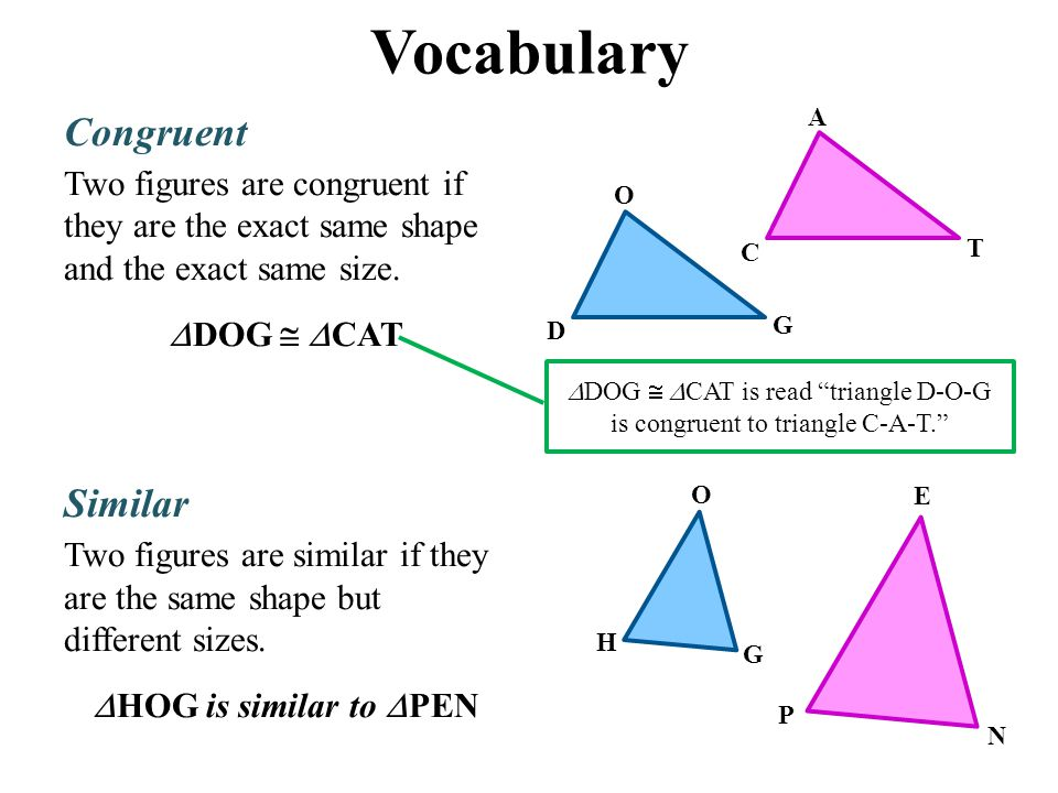 Vocabulary Congruent Two figures are congruent if they are the exact same shape and the exact same size.  DOG   CAT Similar Two figures are similar