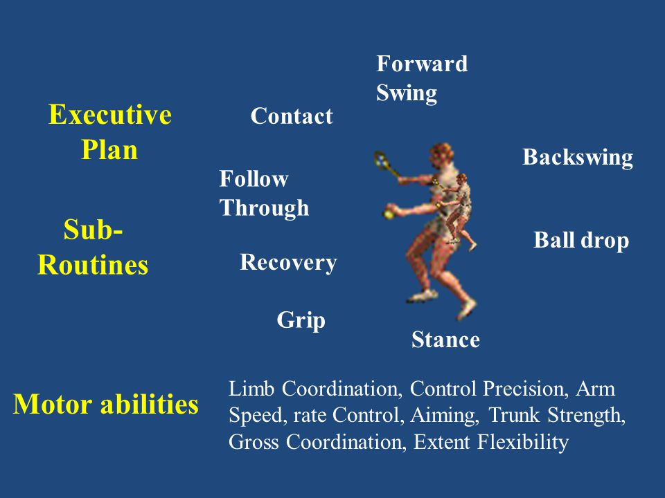 Psychomotor abilities Fundamental Motor Skills Sport Specific Skills Sustained Coordinated Skill Performances From Standing to Scoring the Winning Goal
