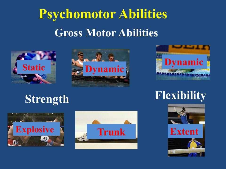Motor or Perceptual Ability.