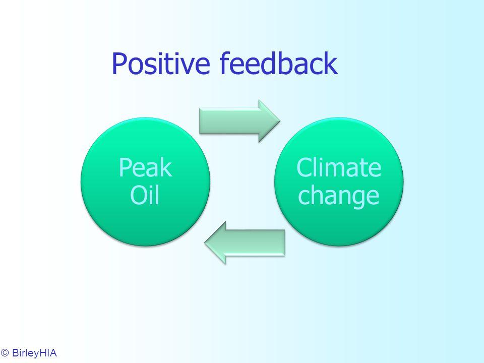 Positive feedback © BirleyHIA 10 Peak Oil Climate change
