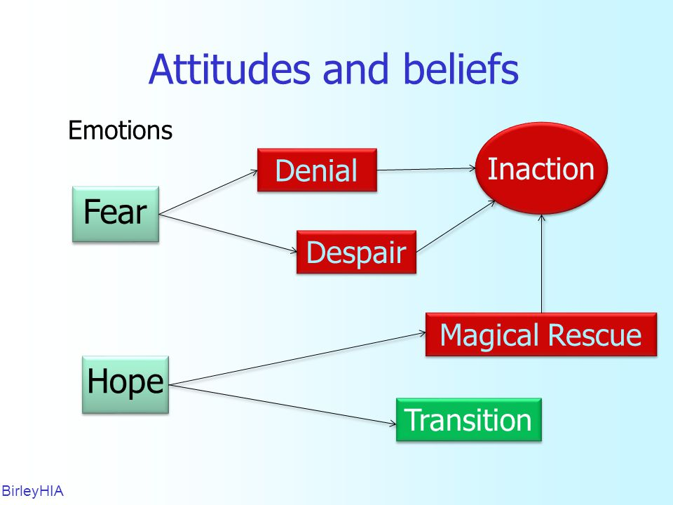 Attitudes and beliefs BirleyHIA 17 Denial Despair Magical Rescue Transition Emotions Fear Hope Inaction
