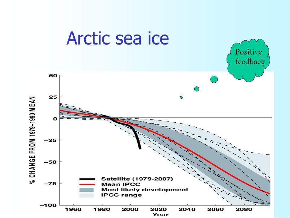 Arctic sea ice Positive feedback