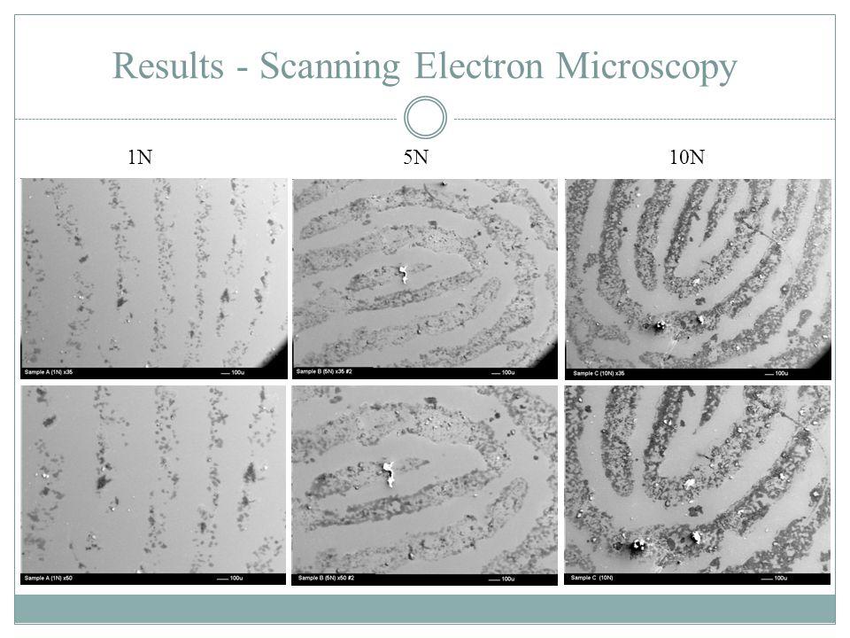 Results - Scanning Electron Microscopy 1N 5N 10N