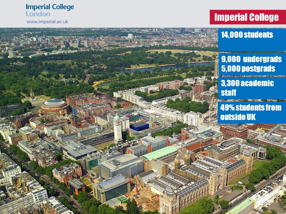 What can you study? www.imperial.ac.uk Business