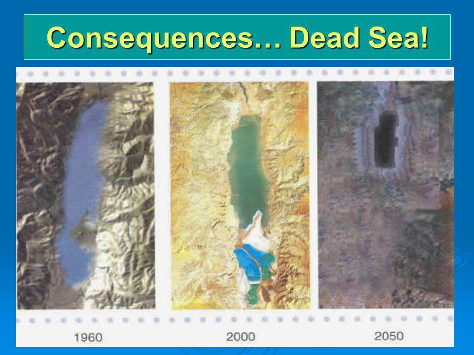 Consequences… Dead Sea!