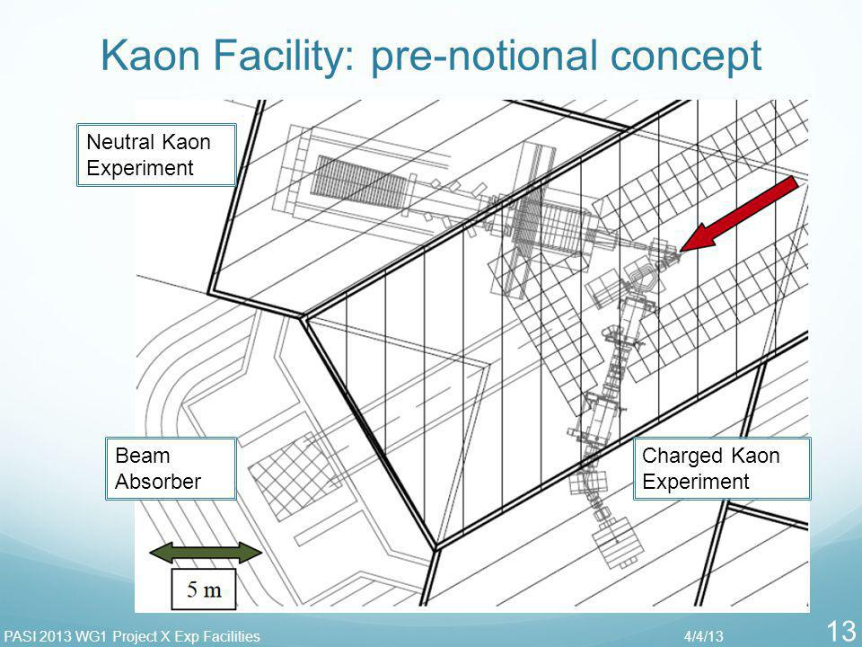 Kaon Facility: pre-notional concept 4/4/13PASI 2013 WG1 Project X Exp Facilities 13 Neutral Kaon Experiment Charged Kaon Experiment Beam Absorber