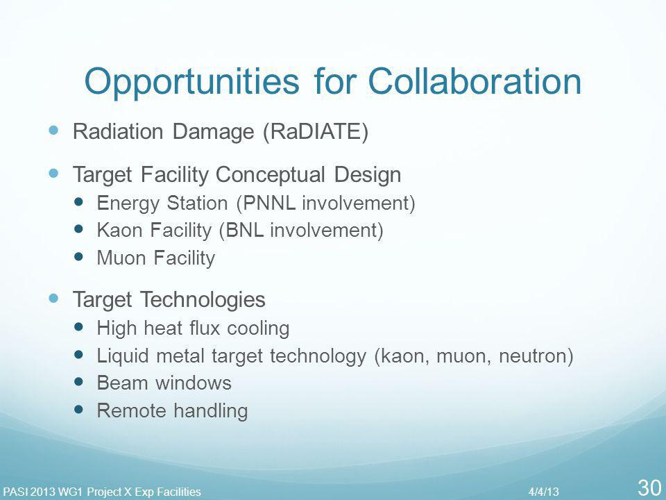 Opportunities for Collaboration Radiation Damage (RaDIATE) Target Facility Conceptual Design Energy Station (PNNL involvement) Kaon Facility (BNL invo