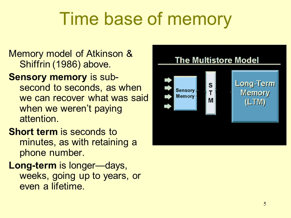 16 The neurobiology of different types of memory Sources of information: human brain injury, animal lesions, imaging of brain during memory processes - the usual approaches (for us).