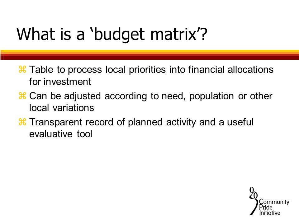 What is a 'budget matrix'.