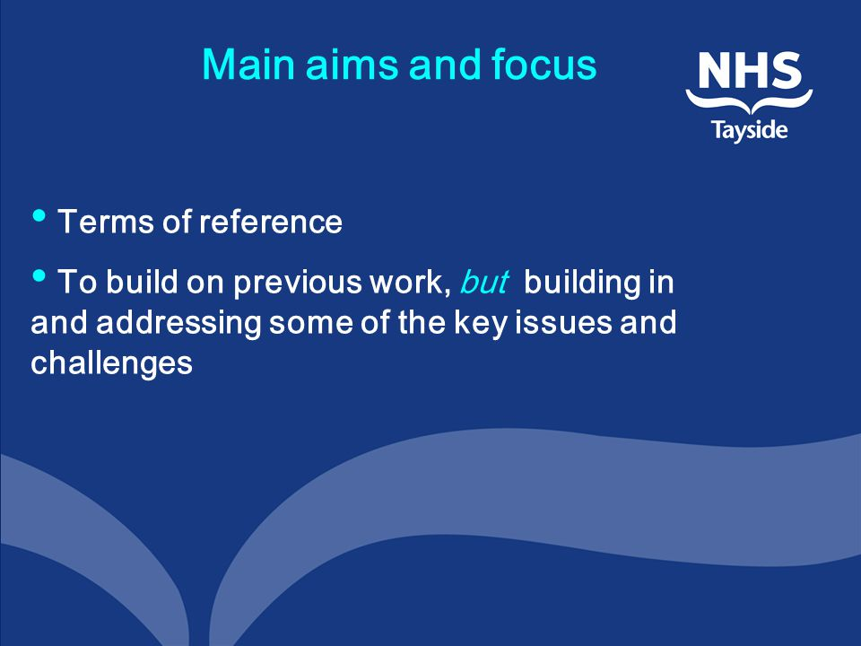Main aims and focus Terms of reference To build on previous work, but building in and addressing some of the key issues and challenges