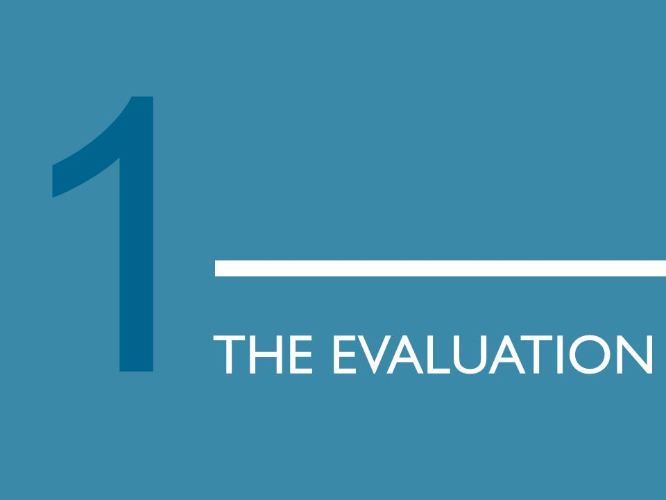1 THE EVALUATION