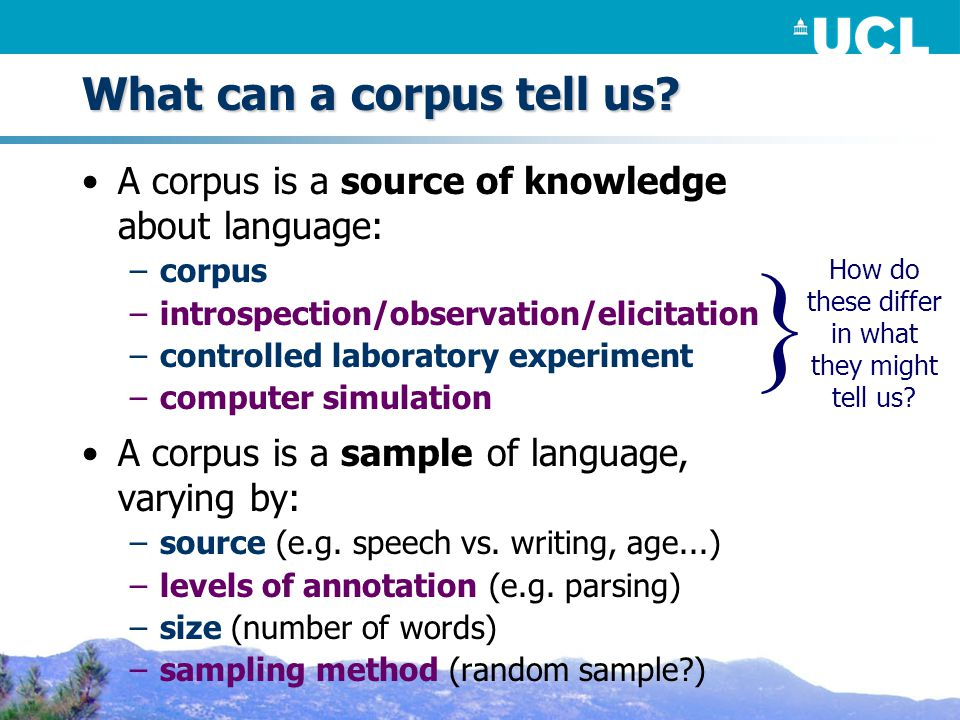 What can a corpus tell us.