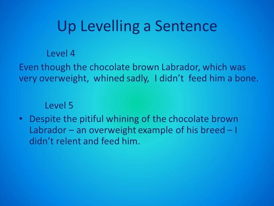 Up Levelling a Sentence Level 4 Even though the chocolate brown Labrador, which was very overweight, whined sadly, I didn't feed him a bone.