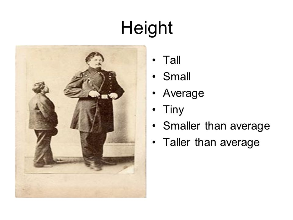 Height Tall Small Average Tiny Smaller than average Taller than average
