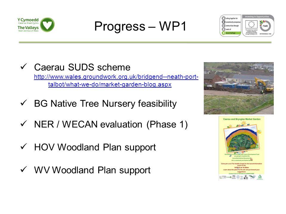 Progress – WP1 Caerau SUDS scheme http://www.wales.groundwork.org.uk/bridgend--neath-port- talbot/what-we-do/market-garden-blog.aspx BG Native Tree Nursery feasibility NER / WECAN evaluation (Phase 1) HOV Woodland Plan support WV Woodland Plan support