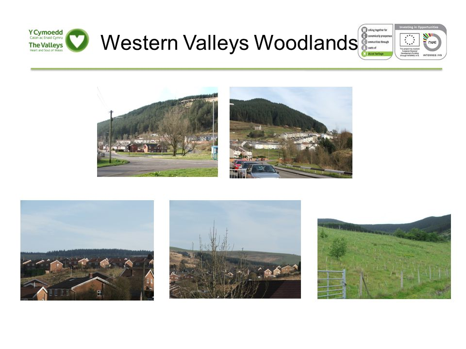 Western Valleys Woodland Plan Actively engage the Community Produce a Strategy & Vision Produce an Action Plan Deliver an 'early win' Develop and apply an evaluation strategy