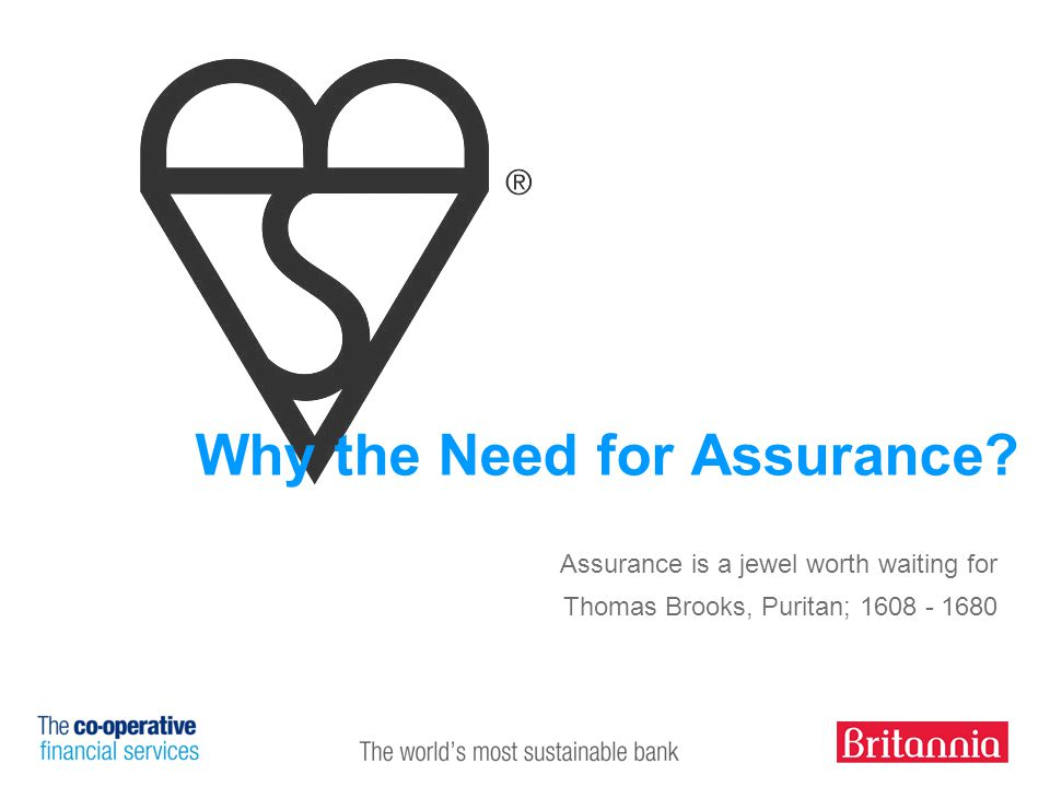 9 Why the Need for Assurance.