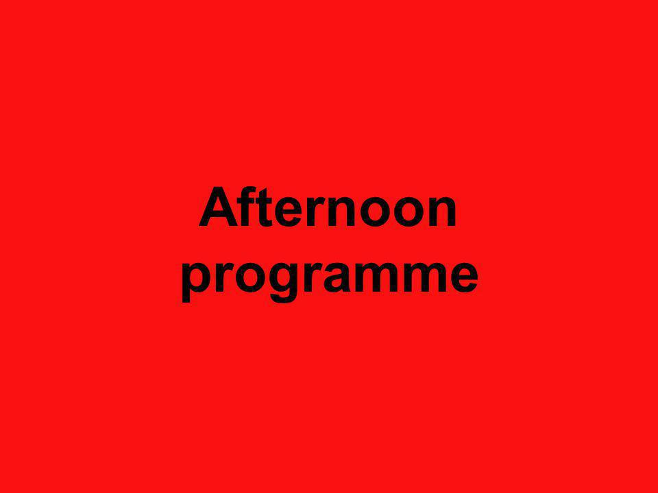 Afternoon programme