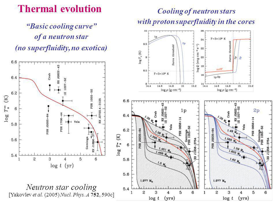 Cooling of neutron stars with proton superfluidity in the cores Basic cooling curve of a neutron star (no superfluidity, no exotica) Thermal evolution Neutron star cooling [Yakovlev et al.