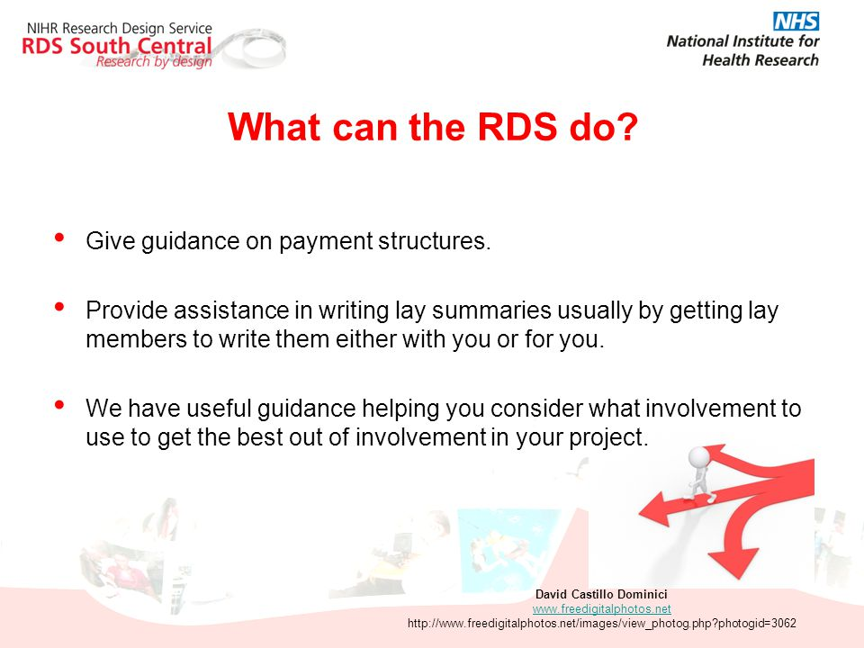What can the RDS do? Give guidance on payment structures. Provide assistance in writing lay summaries usually by getting lay members to write them eit