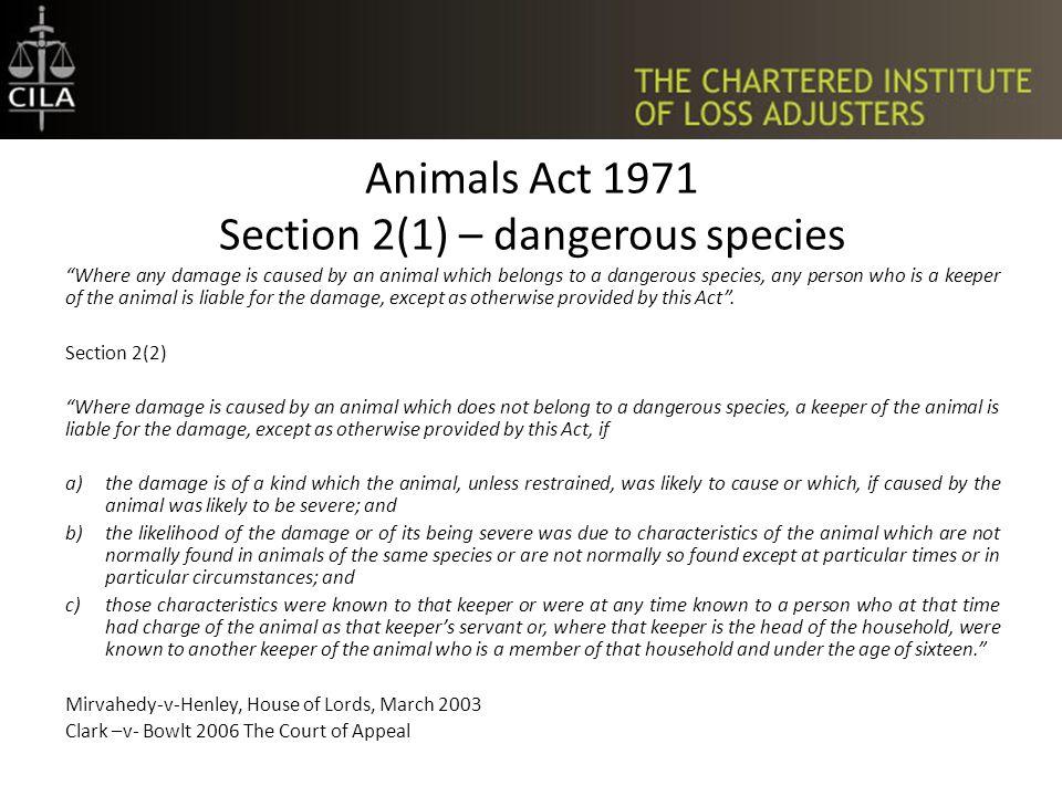 Animals on the Highway Animals on the highway. Innocent motorist strikes animal.