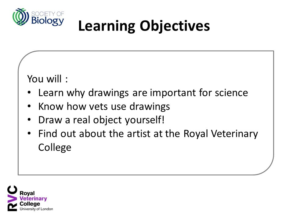 You will : Learn why drawings are important for science Know how vets use drawings Draw a real object yourself! Find out about the artist at the Royal