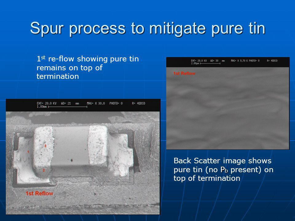 Spur process to mitigate pure tin 1 st re-flow showing pure tin remains on top of termination P b Back Scatter image shows pure tin (no P b present) on top of termination