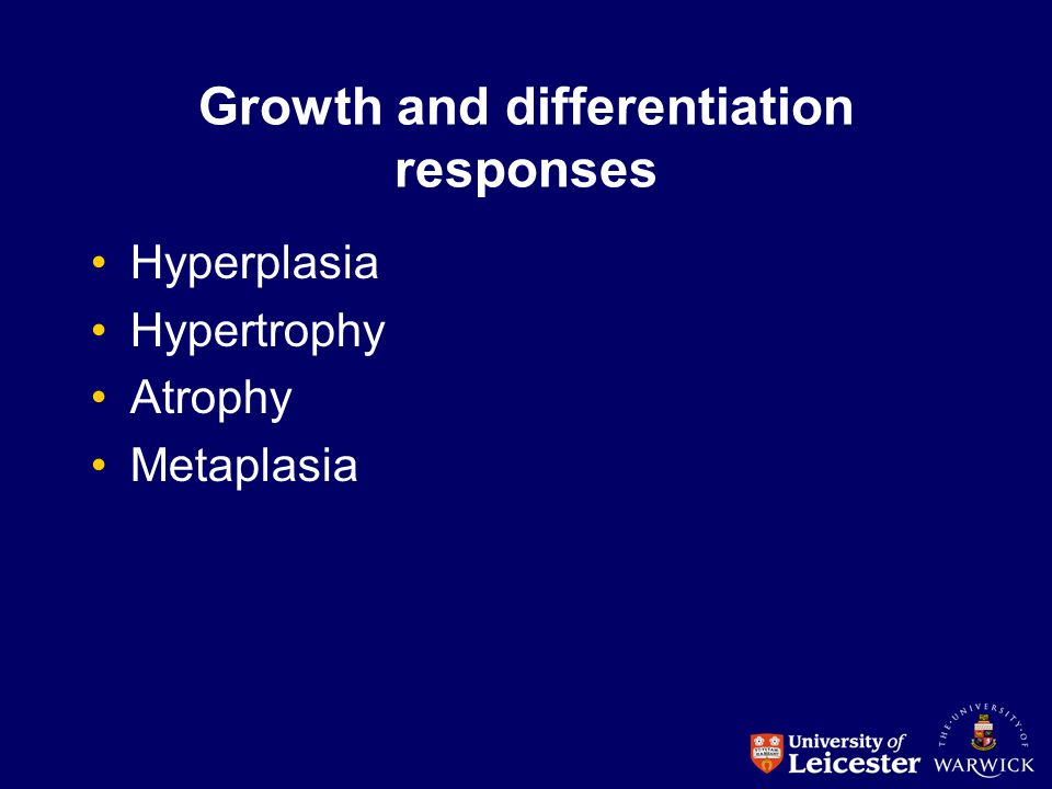 Growth and differentiation responses Hyperplasia Hypertrophy Atrophy Metaplasia