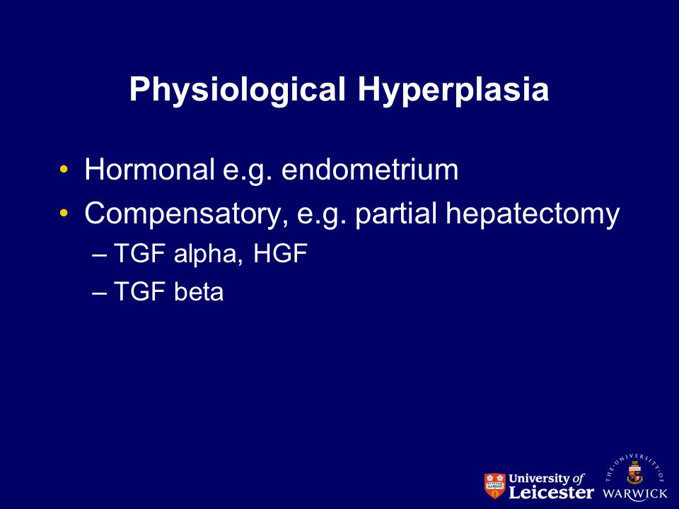 Physiological Hyperplasia Hormonal e.g. endometrium Compensatory, e.g. partial hepatectomy –TGF alpha, HGF –TGF beta