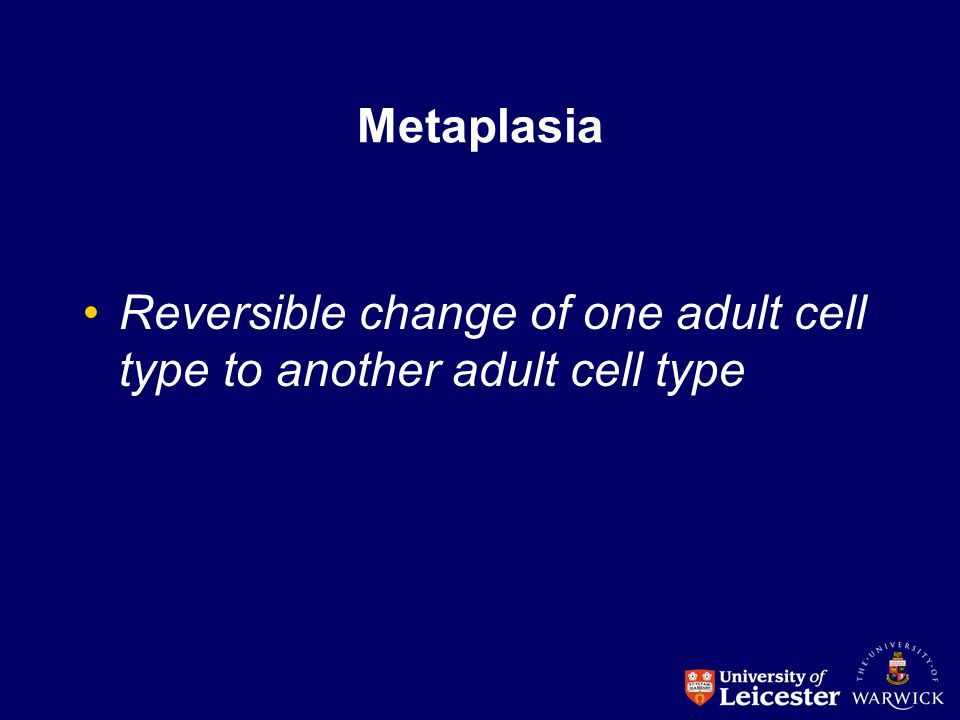 Metaplasia Reversible change of one adult cell type to another adult cell type