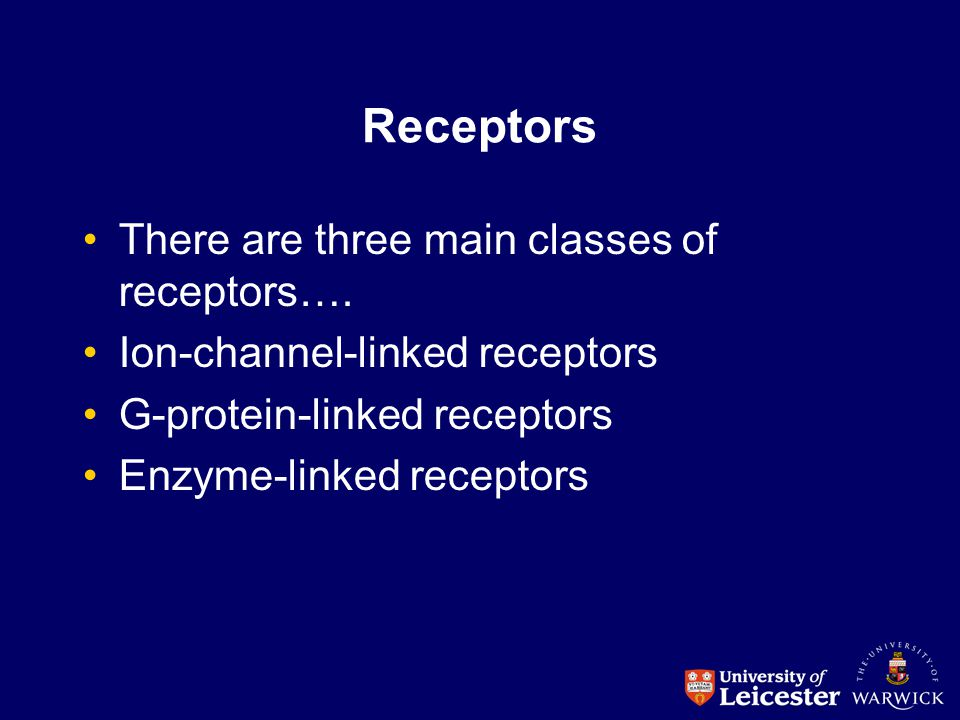 Receptors There are three main classes of receptors…. Ion-channel-linked receptors G-protein-linked receptors Enzyme-linked receptors