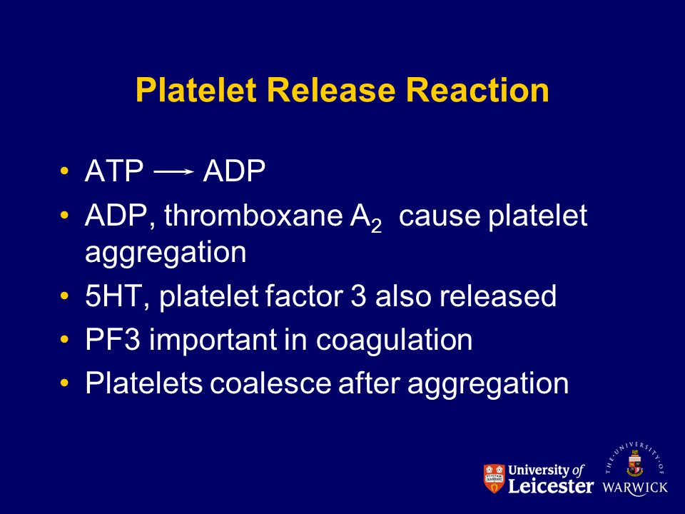Platelet Release Reaction ATP ADP ADP, thromboxane A 2 cause platelet aggregation 5HT, platelet factor 3 also released PF3 important in coagulation Pl