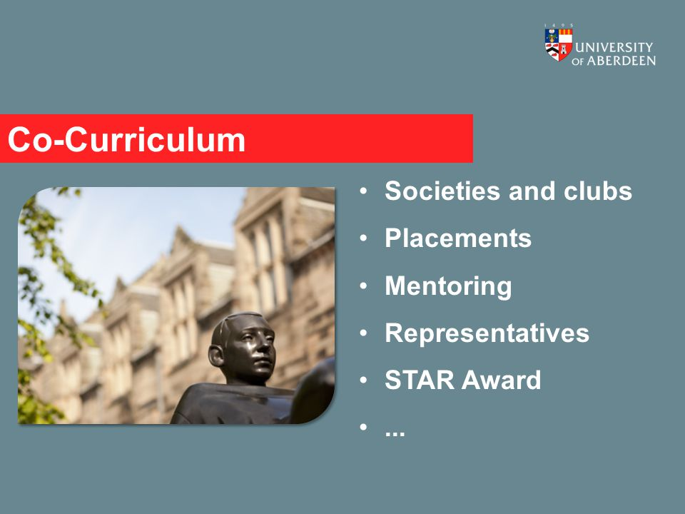 Co-Curriculum Societies and clubs Placements Mentoring Representatives STAR Award...