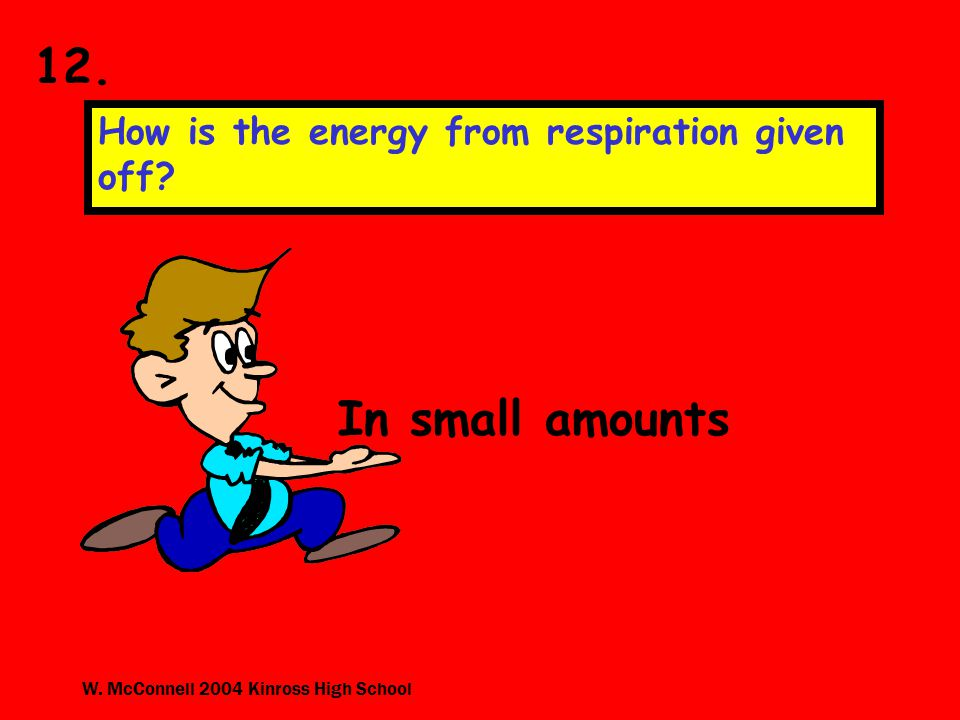 W. McConnell 2004 Kinross High School 12. How is the energy from respiration given off.