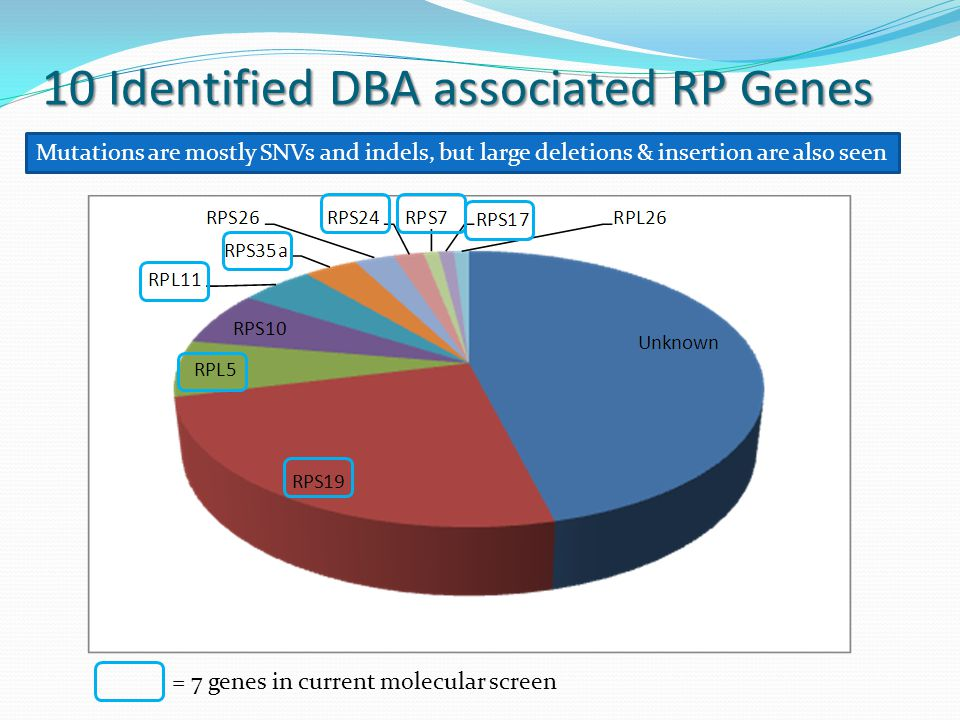 10 Identified DBA associated RP Genes = 7 genes in current molecular screen Mutations are mostly SNVs and indels, but large deletions & insertion are also seen