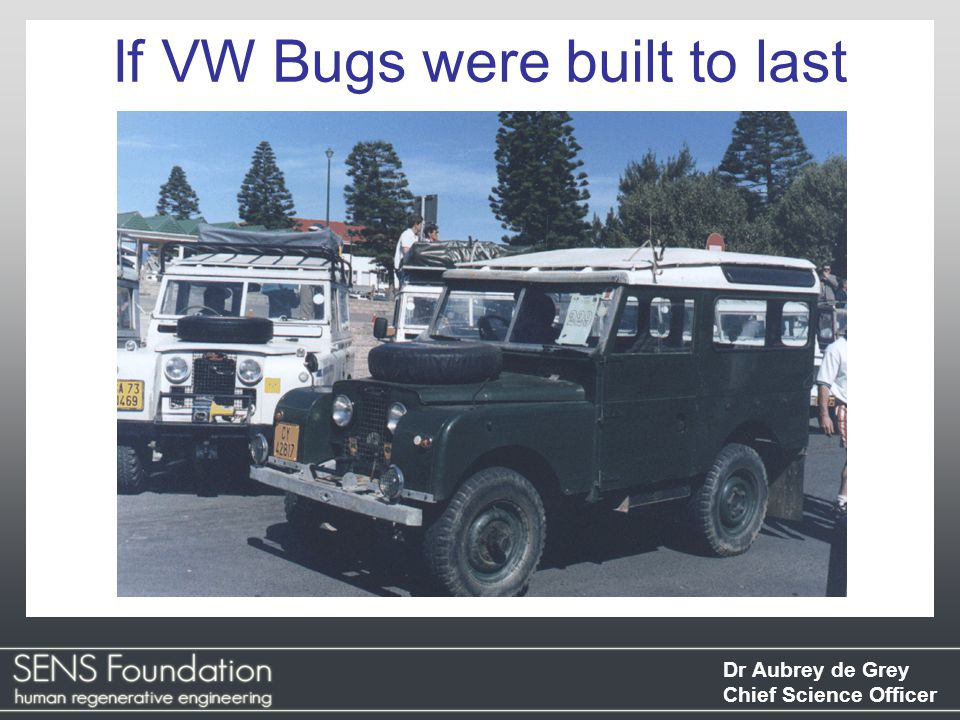 Dr Aubrey de Grey Chief Science Officer If VW Bugs were built to last