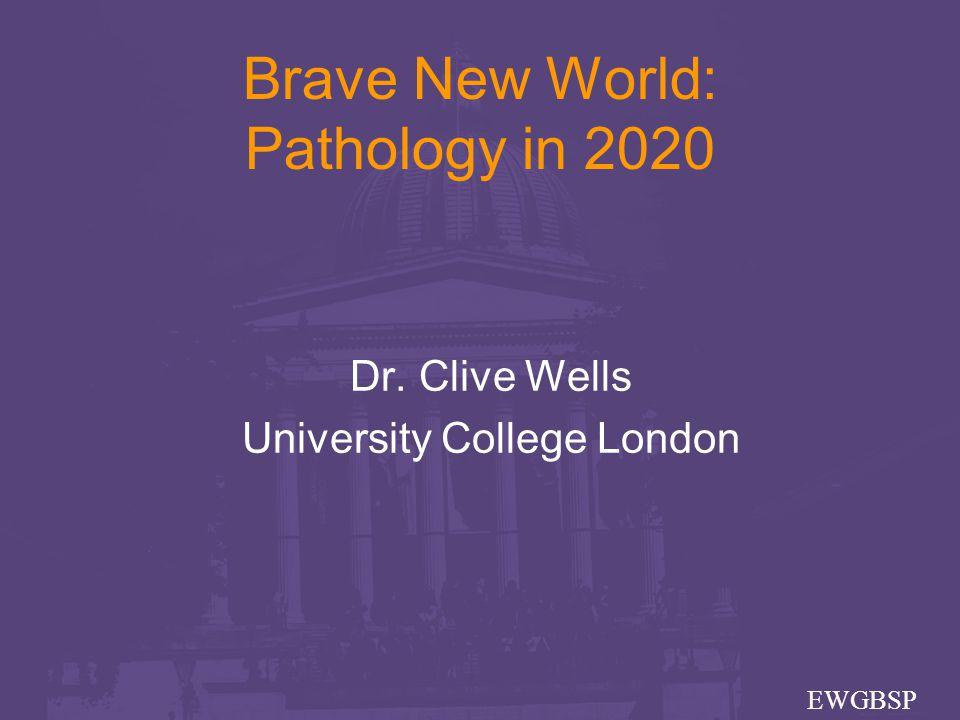 Paul J van Diest Head, Department of Pathology University Medical Center Utrecht The Netherlands Breast pathology 2020 With thanks to:-