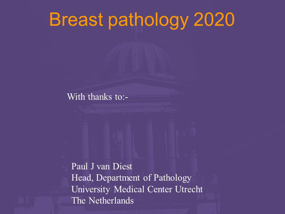 Paul J van Diest Head, Department of Pathology University Medical Center Utrecht The Netherlands Breast pathology 2020 With thanks to:-