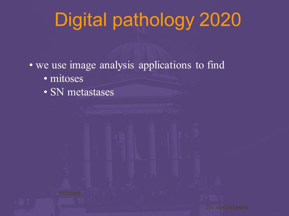 Digital pathology 2020 we use image analysis applications to find mitoses SN metastases mitoses