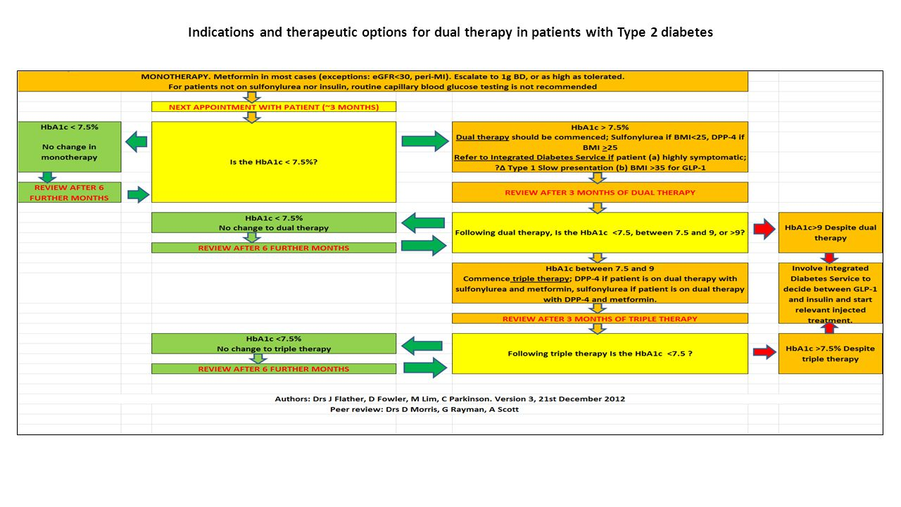 Indications and therapeutic options for dual therapy in patients with Type 2 diabetes