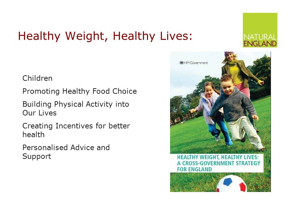 Healthy Weight, Healthy Lives: Children Promoting Healthy Food Choice Building Physical Activity into Our Lives Creating Incentives for better health Personalised Advice and Support