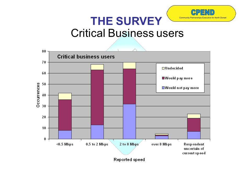Critical Business users THE SURVEY