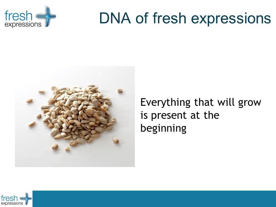 DNA of fresh expressions Everything that will grow is present at the beginning