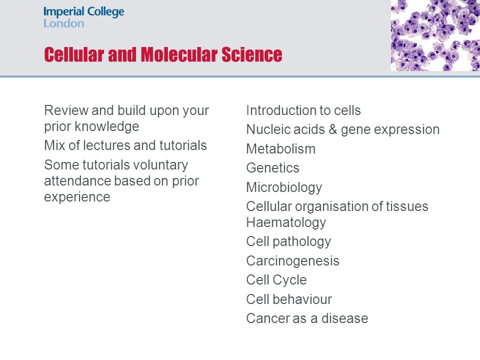 Cellular and Molecular Science Review and build upon your prior knowledge Mix of lectures and tutorials Some tutorials voluntary attendance based on prior experience Introduction to cells Nucleic acids & gene expression Metabolism Genetics Microbiology Cellular organisation of tissues Haematology Cell pathology Carcinogenesis Cell Cycle Cell behaviour Cancer as a disease