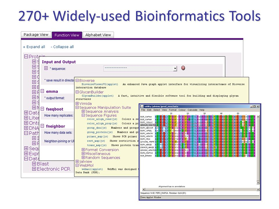 270+ Widely-used Bioinformatics Tools
