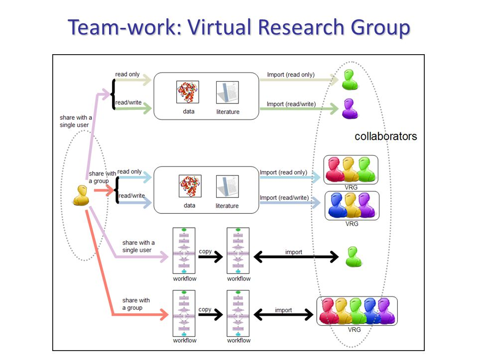 Team-work: Virtual Research Group
