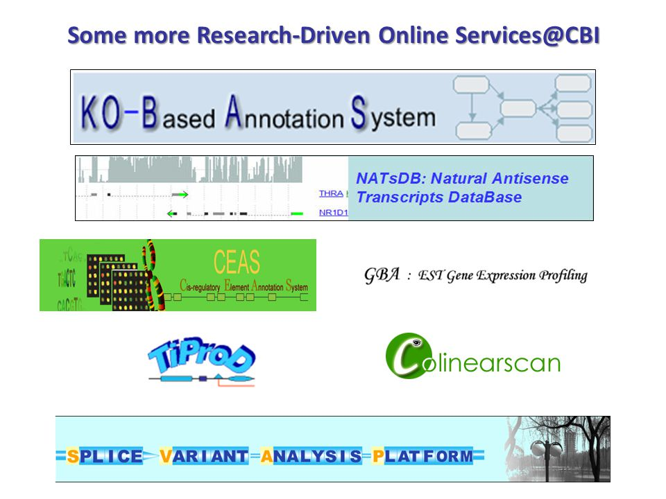 Some more Research-Driven Online Services@CBI