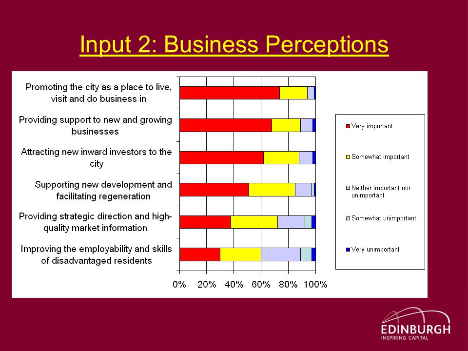 Input 2: Business Perceptions