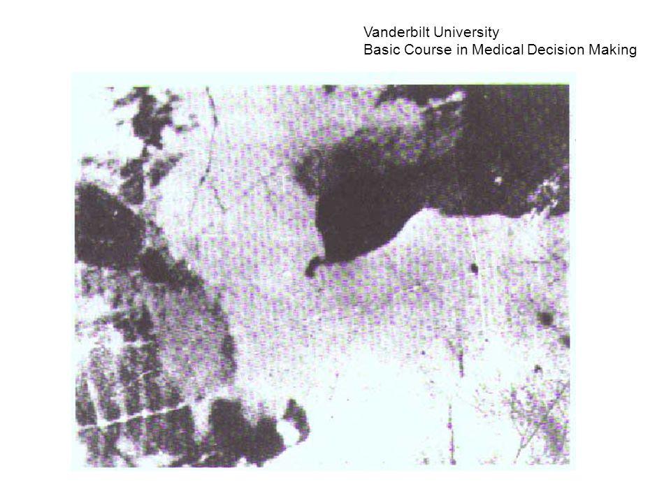 Vanderbilt University Basic Course in Medical Decision Making